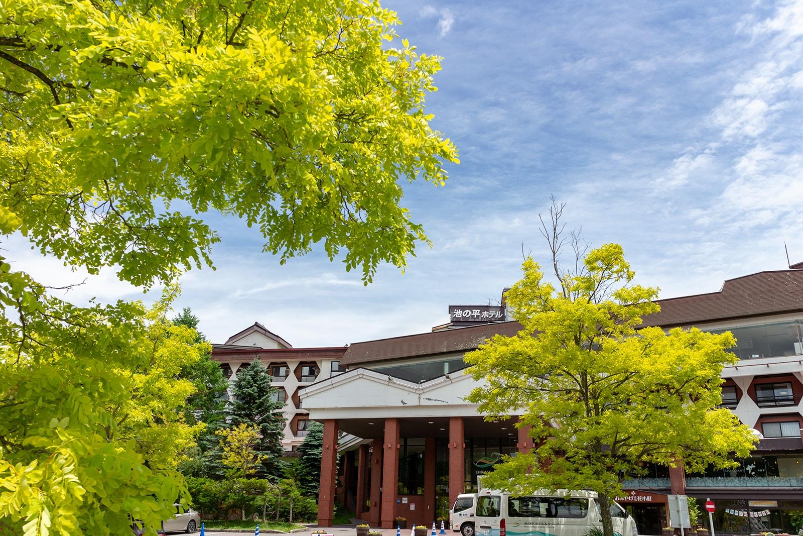 黄金色のアカシアに彩られた白樺リゾート池の平ホテル