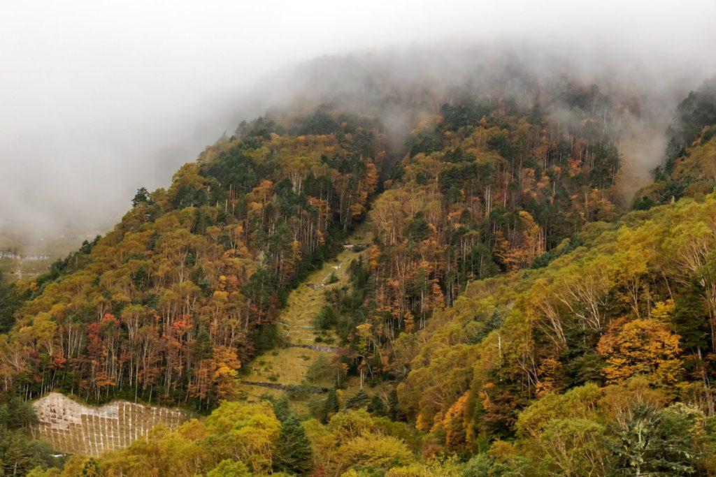 10月6日(日)大河原峠周辺の紅葉状況