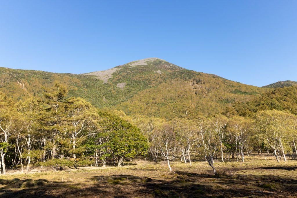 まだまだ色づきかすかな蓼科山西側。色づきが進めば見事な景色を作り出します。