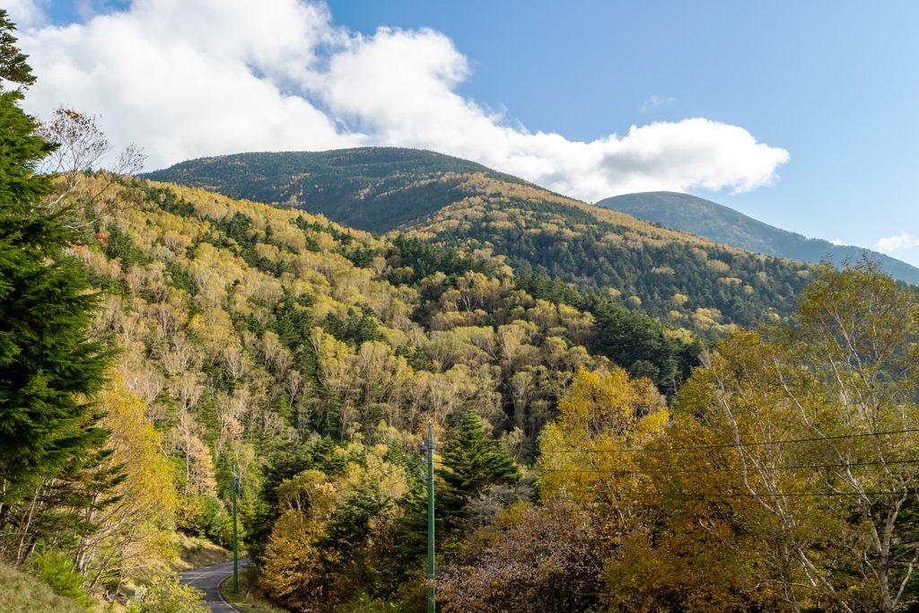 ダケカンバ(岳樺)などが色づき山々を彩る景色を楽しめる蓼科スカイラインの立科町側