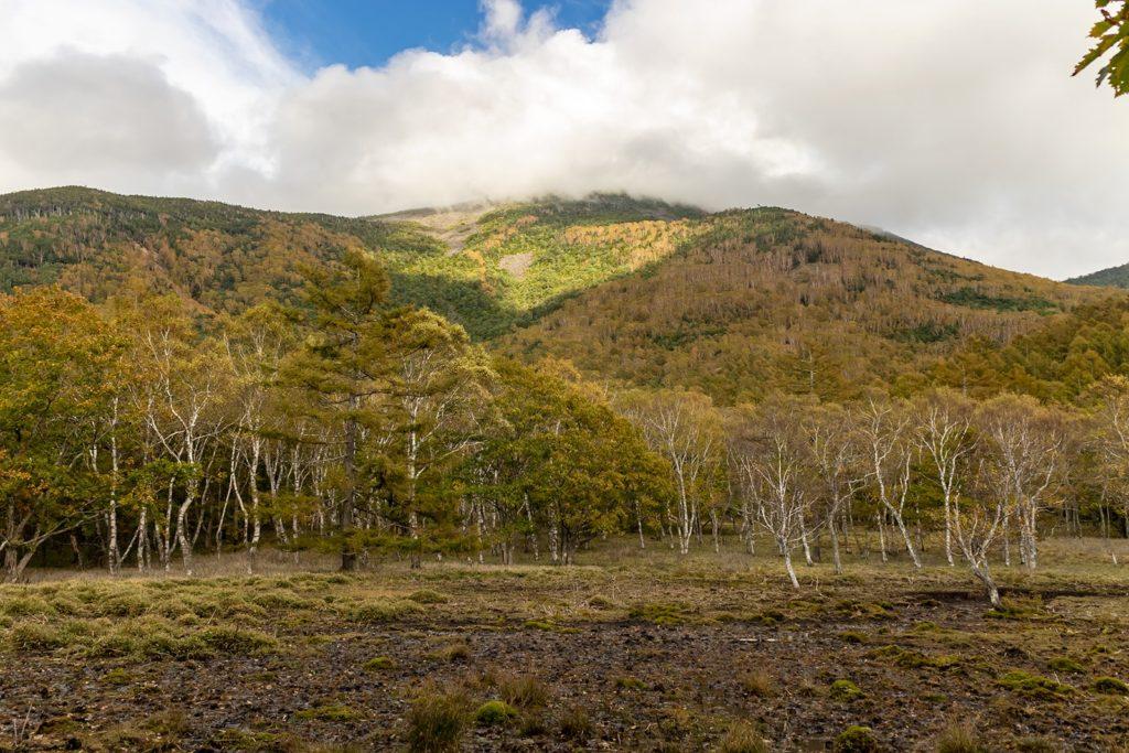 蓼科山の西側斜面も標高の高い場所で色づきが深まってきています。