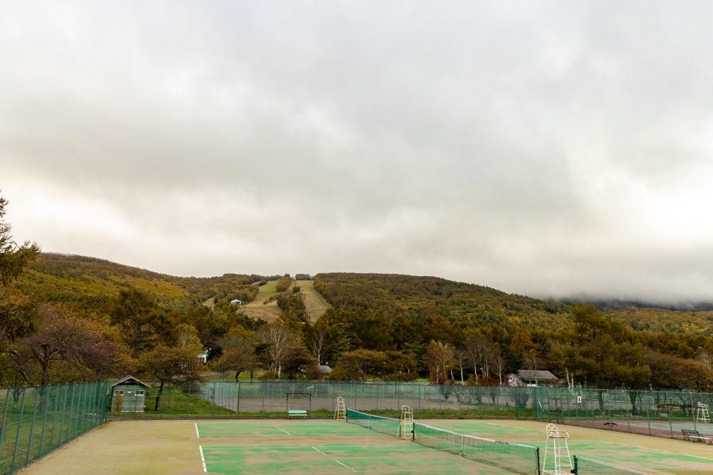 テニスコートの向こうに拡がる雑木林も色づき豊かな表情を楽しませる。