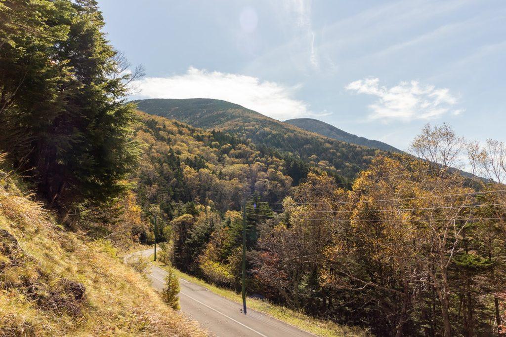 青空の下で紅葉に色づき見ごろを迎える蓼科山付近