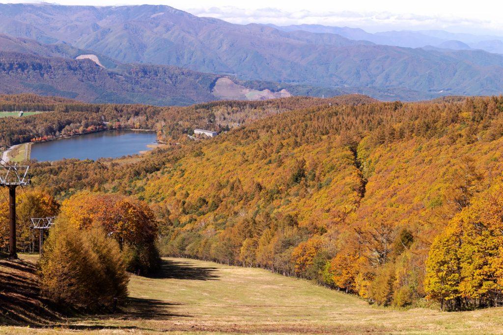 眼下に見えるのが白樺高原の女神湖、山肌の紅葉とともにテラスから楽しめます。
