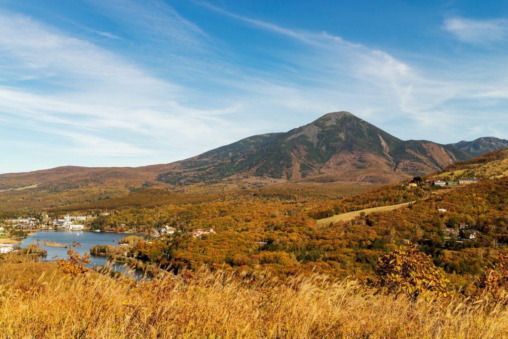 秋の青空と紅葉、すすきに囲まれた白樺湖。