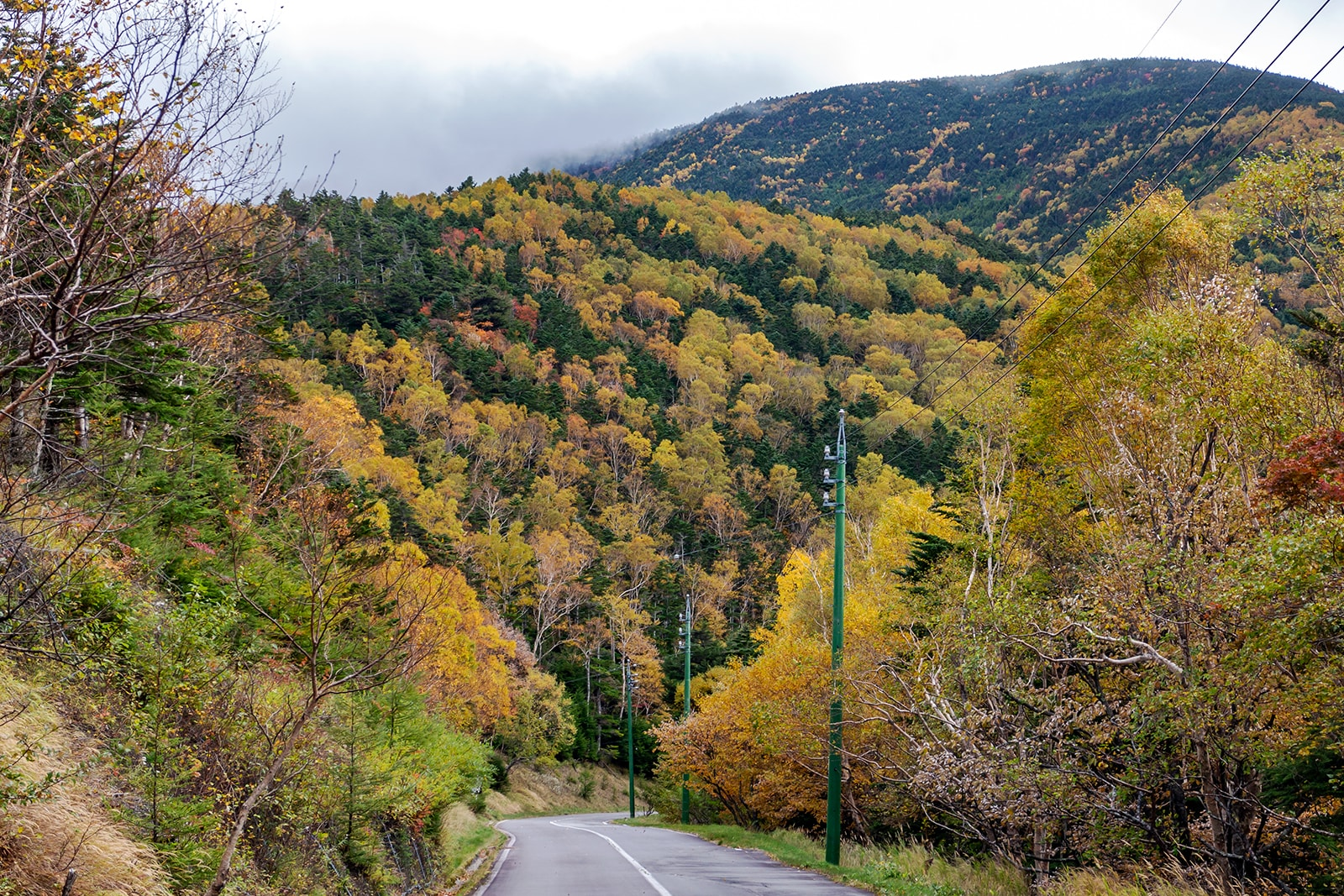 蓼科スカイラインの山肌では美しい紅葉による景色が拡がる。
