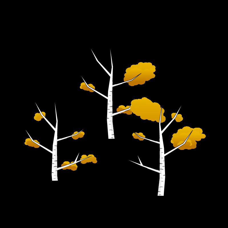 広葉樹落葉