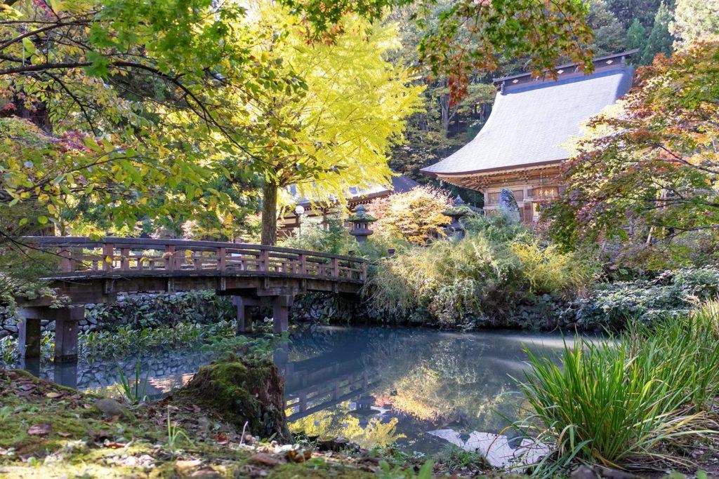 境内のイチョウが色づき池の水面に映りこむ:津金寺の紅葉情報