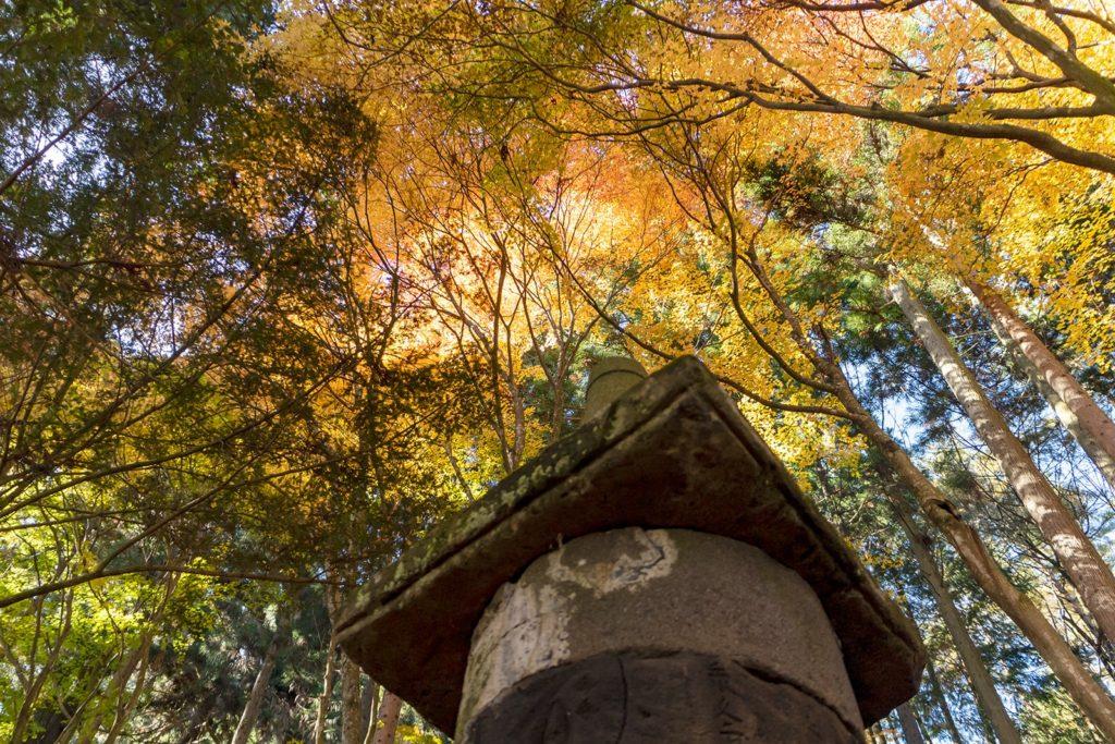 長野県の県宝に指定されている石塔と色鮮やかな紅葉