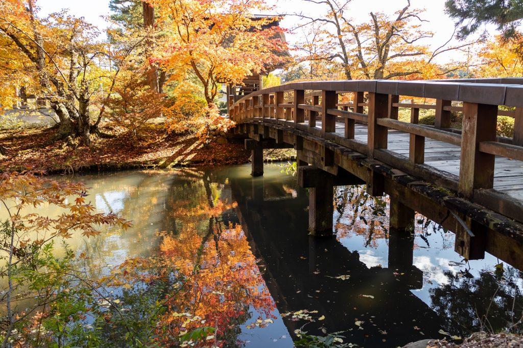 古い歴史を持つ津金寺では秋の紅葉と和の雰囲気が合わさり極上の景色を作り出しています。