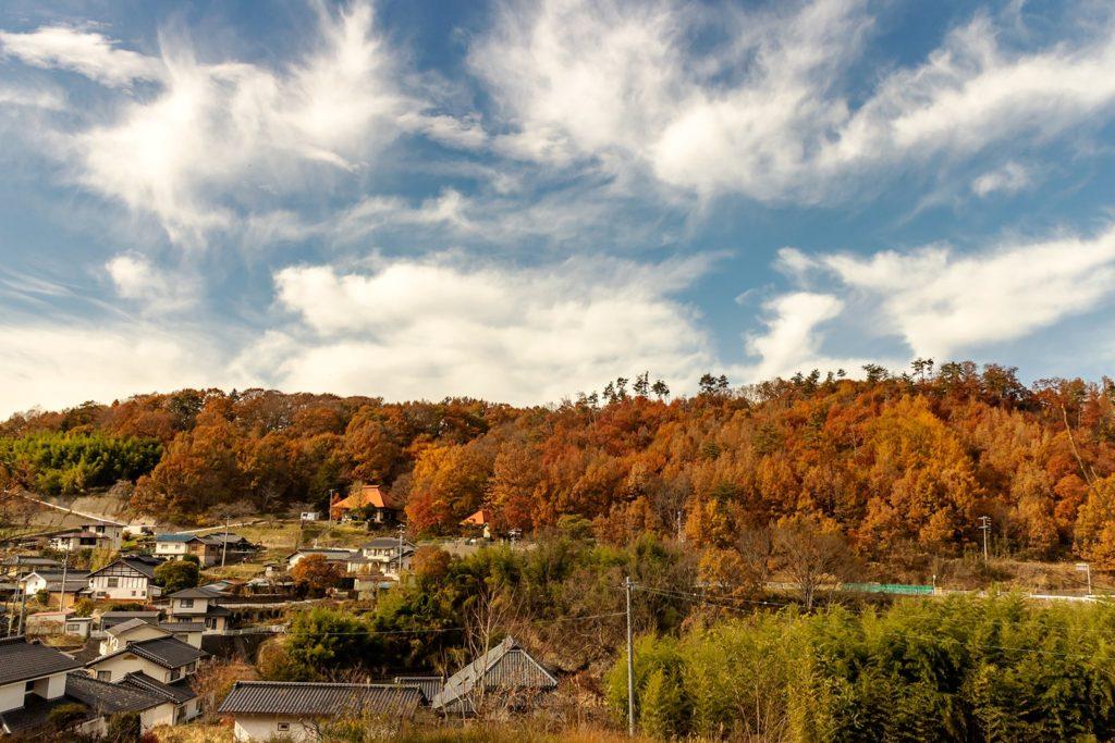 谷間に沿って形成されている藤沢の集落では美しい紅葉が拡がっています。