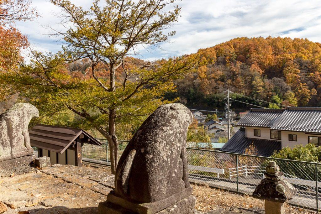 丸い狛犬も美しい紅葉を眺めているようです。