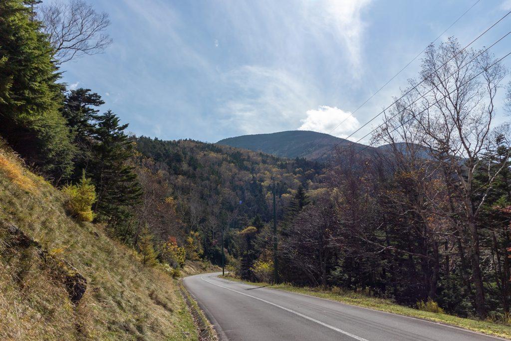 標高2,000m近くにもなる蓼科スカイラインでは広葉樹は落葉しています。