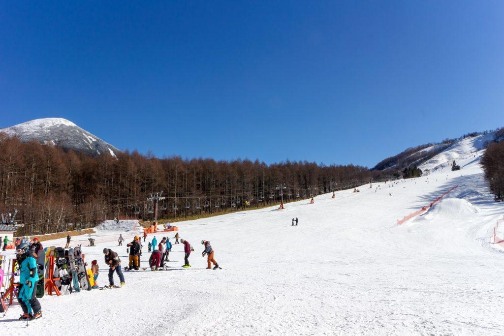 晴れた空の下で楽しむスキー場:しらかば2in1スキー場