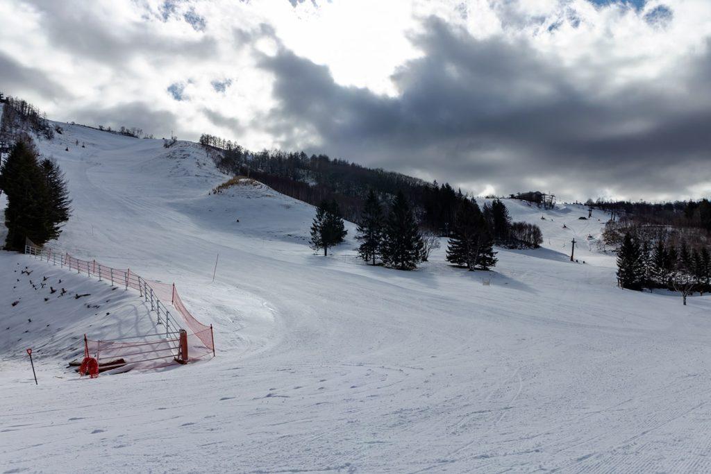 しらかば2in1スキー場のゲレンデ状況(2020年1月14日)