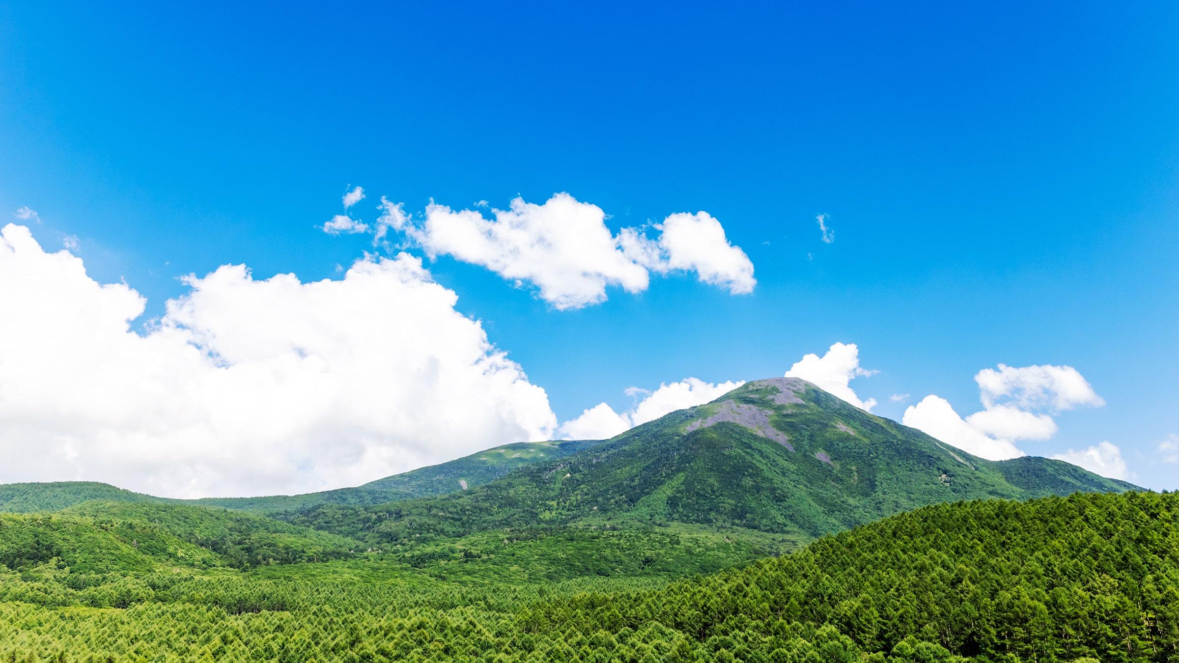 白樺高原を象徴する美しい山容の蓼科山