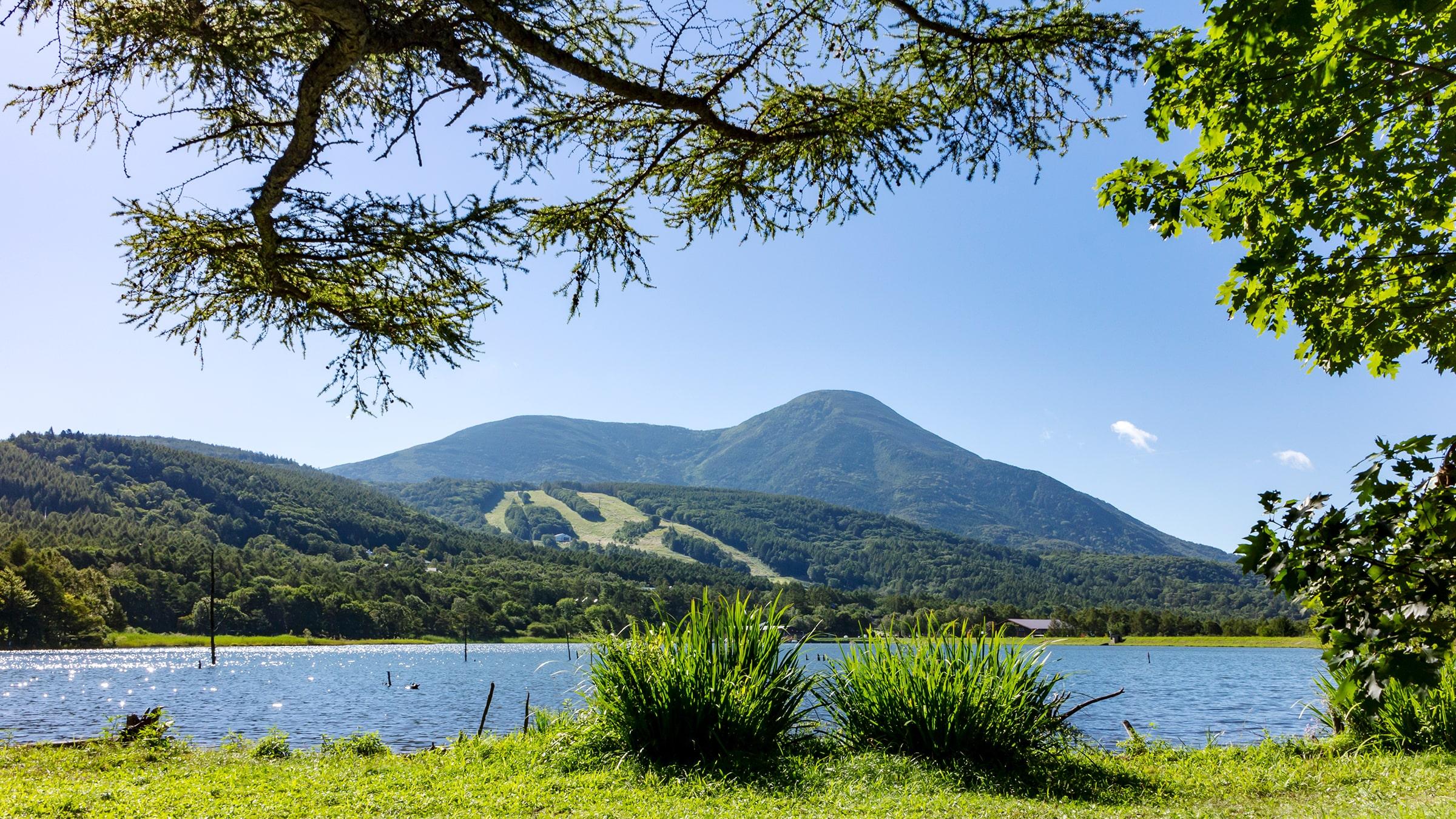白樺高原 女神湖畔からの蓼科山
