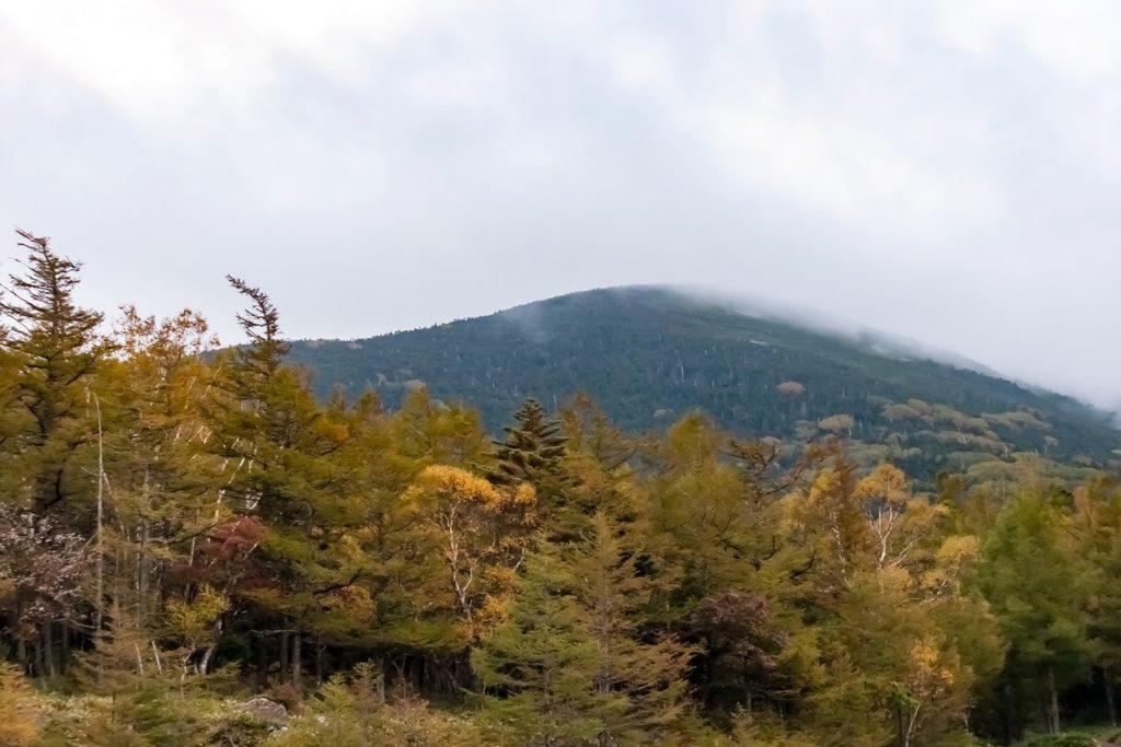 2020年10月6日の信州たてしな 白樺高原の紅葉