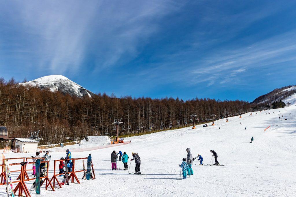 白樺高原にあるしらかば2in1スキー場の様子