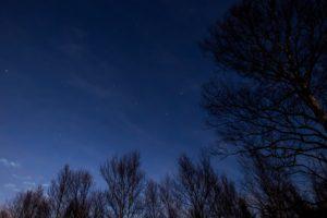 2020年12月29日、蓼科第二牧場からの星空。まだ少し明るい夜空に光るはくちょう座。