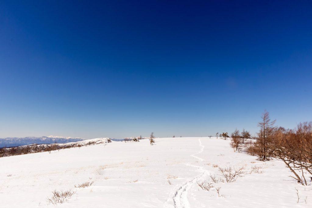 長野県でスノーシュートレッキングをするのにおすすめの八子ヶ峰コース。真っ白く続く雪原に残るひとすじの道。