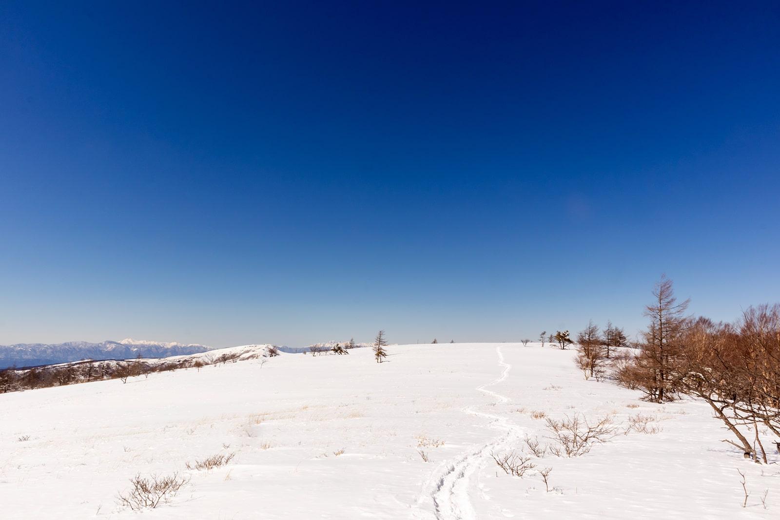 長野県でスノートレッキングをするのにおすすめの八子ヶ峰コース。真っ白く続く雪原に残るひとすじの道。