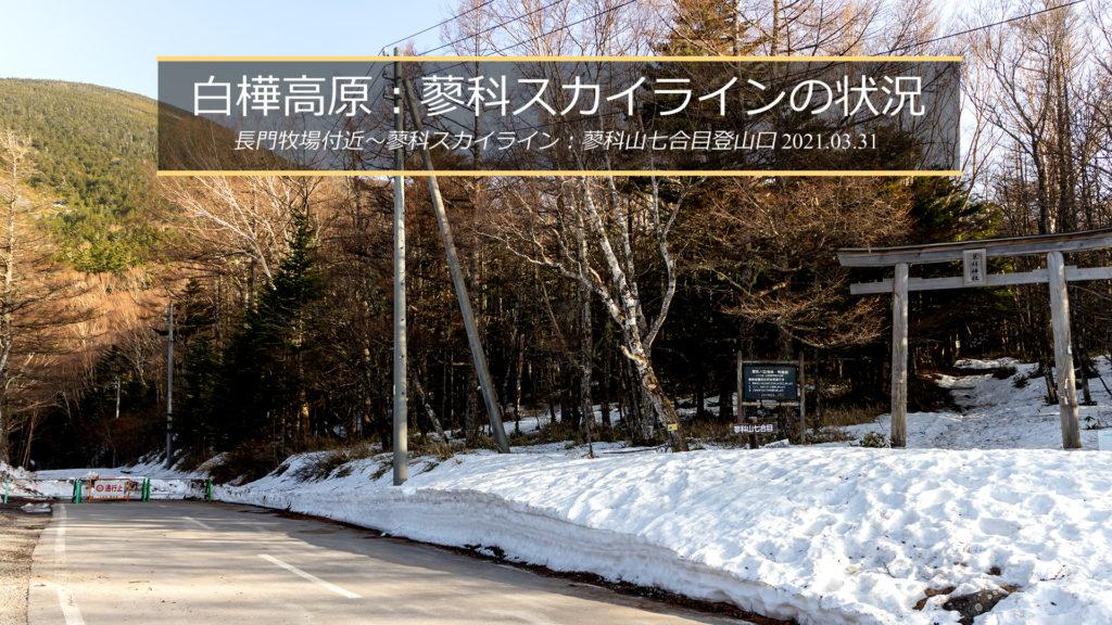 2021年3月31日の蓼科スカイライン、蓼科山七合目登山口の様子